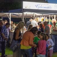 HKV Heimatfest 2015-06-27 stz-48