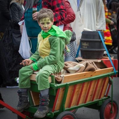 Karnevalszug Birk 2017-02-26 stz-53