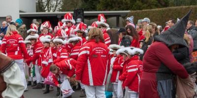 Karnevalszug Birk 2017-02-26 stz-85