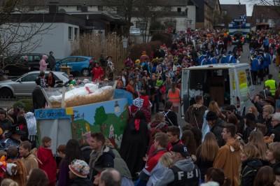 Karnevalszug Birk 2017-02-26 stz-95